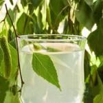 Березовый сок для похудения