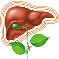 Диета при заболевании печени