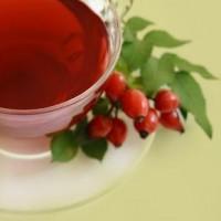 Шиповник для похудения: эффективное и проверенное растение!