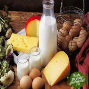 Что поможет в борьбе с мочекаменной болезнью? Различные медикаменты, но самое важное - диета при мочекаменной болезни!