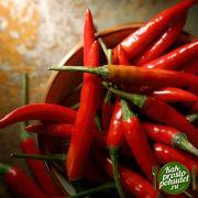 А как использовать красный перец для похудения? Об этом читайте здесь!